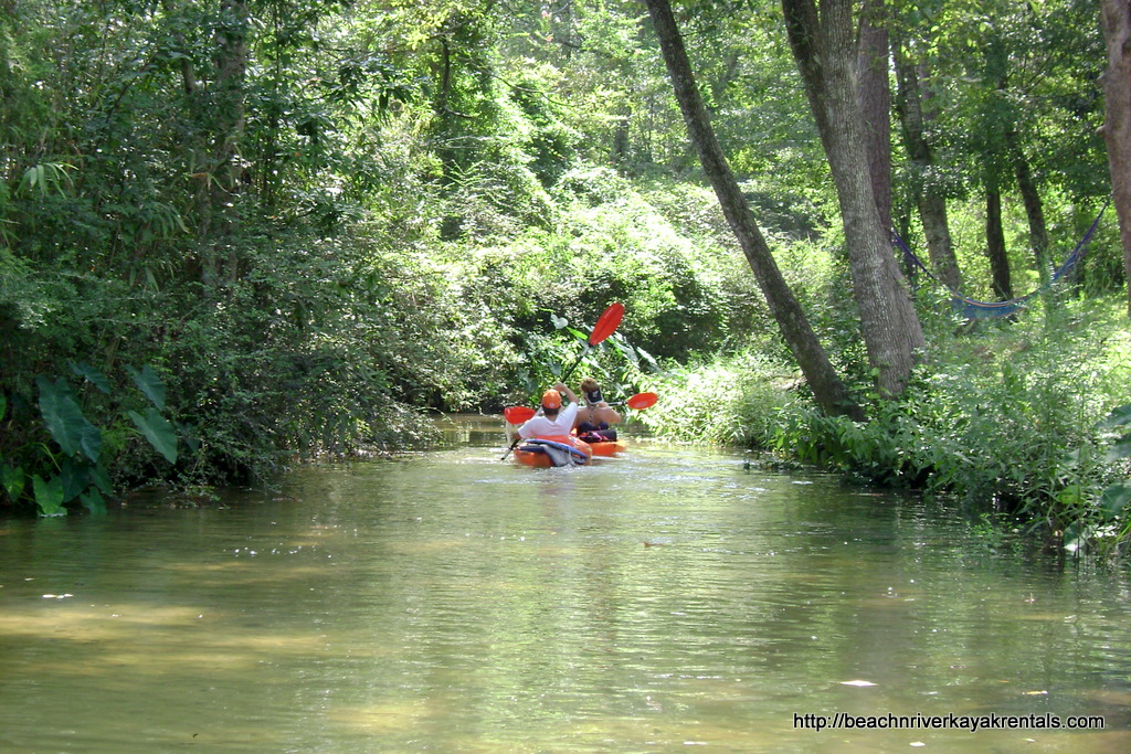 "Although it is nearly impossible to describe the cool, calm difference you will have paddling with BeachnRiver Kayak Rentals, all one has to do is look at a website's photos to notice the focus of their ""paddling experience."" The ""green"" hue of our photos suggest a deep ""coolness"" and ""calm"" atmosphere. If you're looking for an ""activity"" to ""de-stress"" or just peacefully enjoy with your family, choose kayaking with BeachnRiver Kayak Rentals. You'll soon learn why so many folks say it is a 5-star kayaking experience!"
