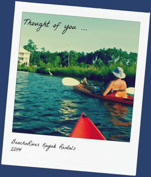 """This PostCard made in 2014 shows River Rick relaxing in our recreational kayak near a landmark home nearing the end of the """"No Wake Zone."""" The wildlife and scenery is diverse. Here you may see dolphins, shrimp boats parked and selling their catch and folks fishing from Jon Boats. What you won't see? Speed boats or Skeedos whizzing by, kicking up wakes that  make it challenging to paddle small kayaks. These are all things to consider when choosing a kayaking tour or experience --- especially first-timers!"""